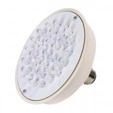 Automotive Bulb Inspection Lamps